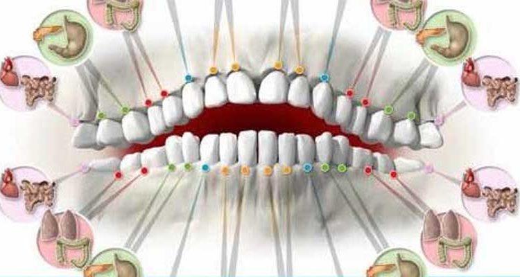 odontologia biologica