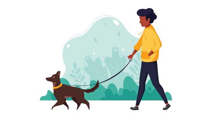 fazer exercicio com cachorro